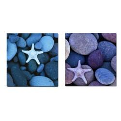 Cuadros para la decoración de tu cuarto de baño. Tonos azules, piedras redondas, estrellas de mar