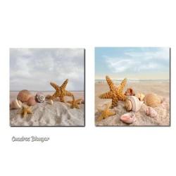 Dos bonitos cuadros para baños con estrellas de mar y caracolas en la arena de la playa, geniales para tu cuarto de baño.
