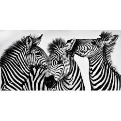 cuadro moderno juvenil cebras foto impresion lienzo decoración hogar