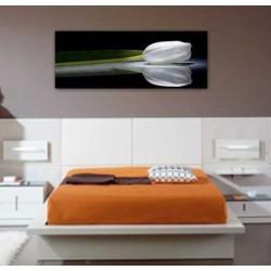 Cuadros para dormitorios cuadro foto impresion lienzo tulipan decoracion dormitorio