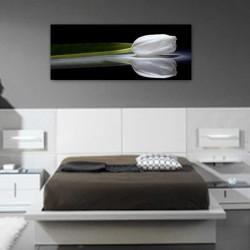 cuadro grande foto impresión lienzo decorativo cuadro para sala