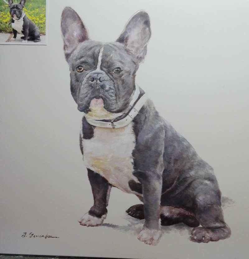 cuadros retratos de animales y mascotas